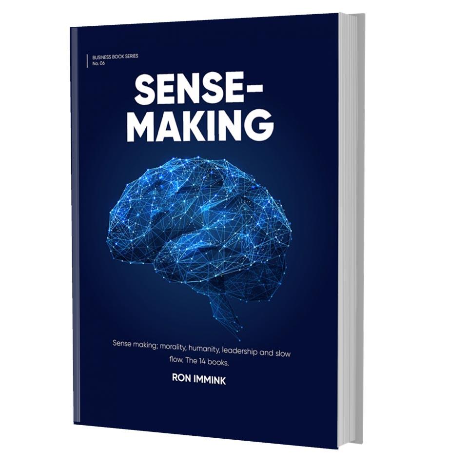 sensemaking cover